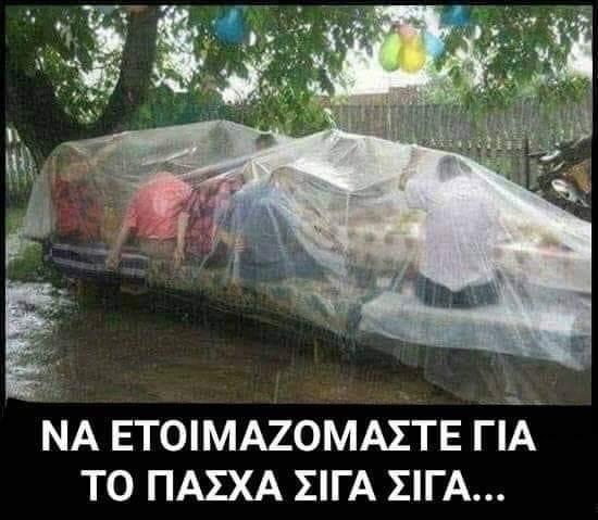 FB_IMG_1554930793592.jpg