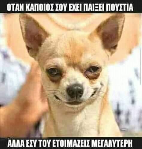 FB_IMG_1557950040682.jpg