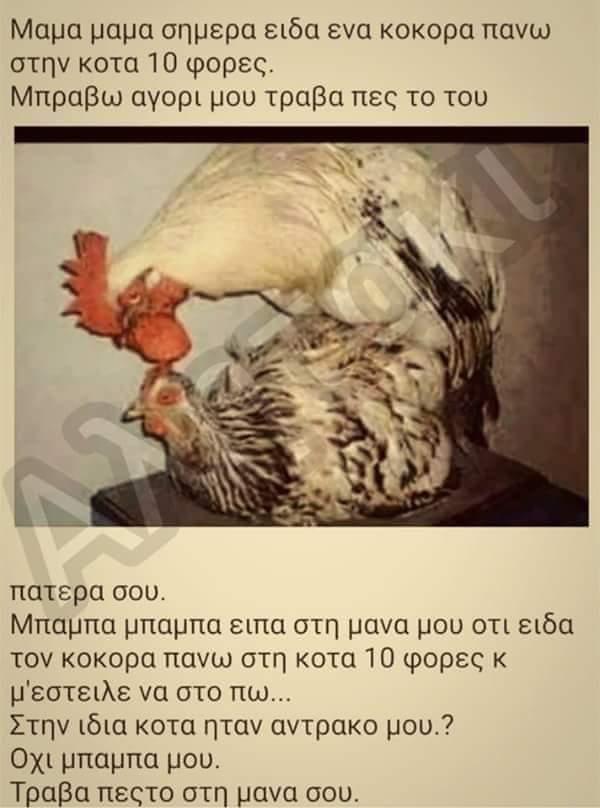 FB_IMG_1557244810579.jpg