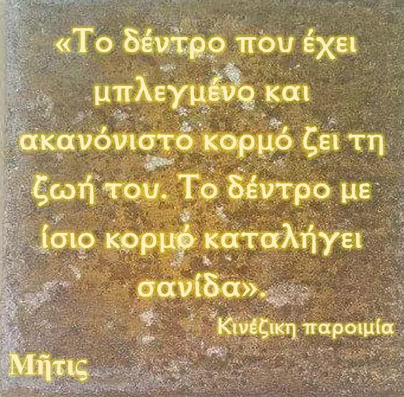 FB_IMG_1563120750236.jpg