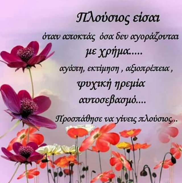FB_IMG_1562946122111.jpg