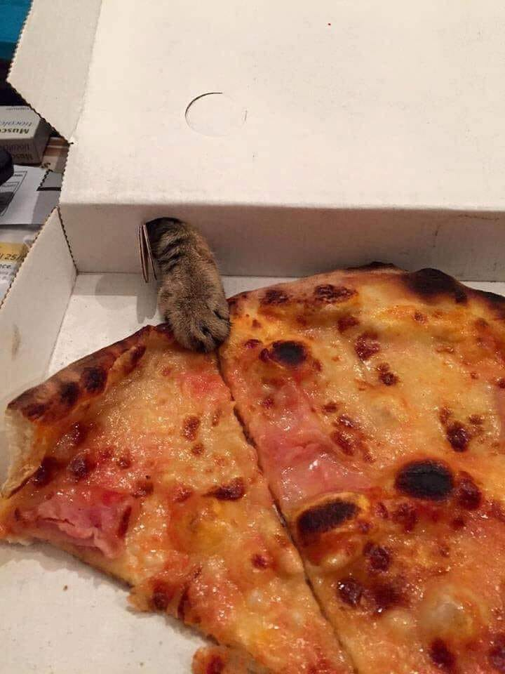 pitsa.jpg