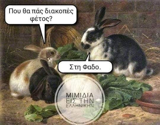 FB_IMG_1596633429884.jpg