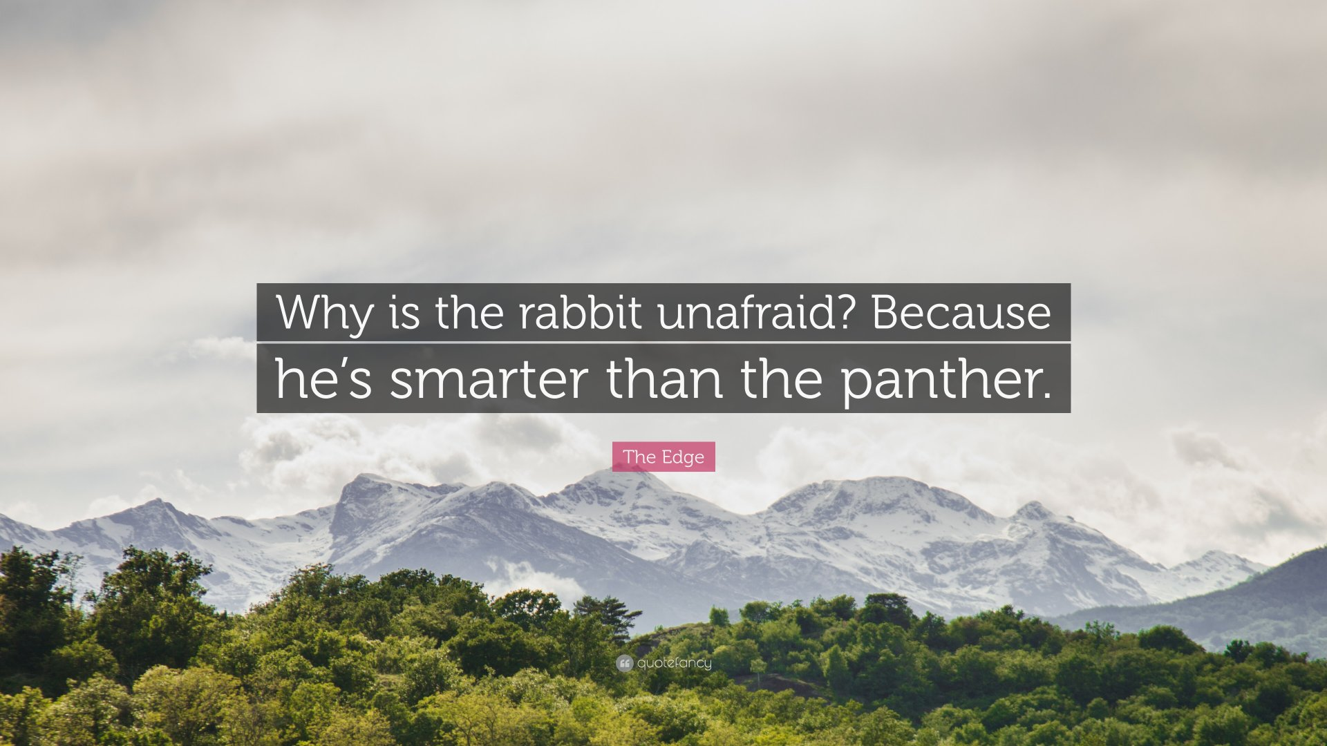 1560722-The-Edge-Quote-Why-is-the-rabbit-unafraid-Because-he-s-smarter.jpg