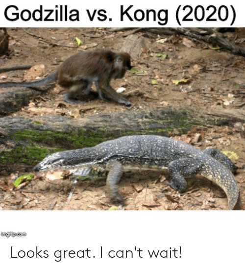godzilla-vs-kong-2020-imgiup-com-looks-great-i-cant-wait-61795465.png