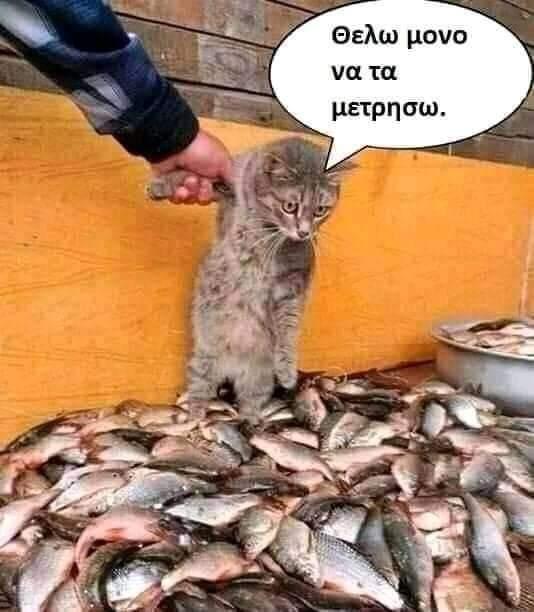 FB_IMG_1618035872232.jpg