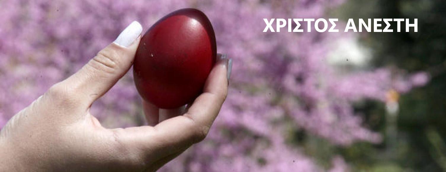 αυγα-1520x1000.jpg