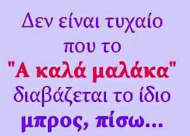 eee2e644c63714b49ba2fc883e6de0a6.jpg